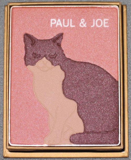Paul-Joe-Meow-shadow-inside