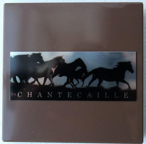 Chantecaille-wild-horses-case