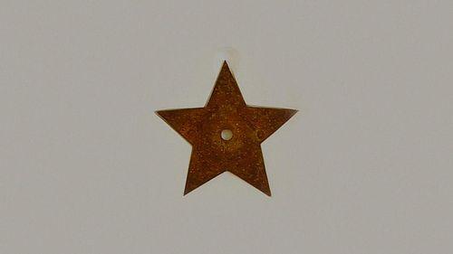 Dior-lucky-star