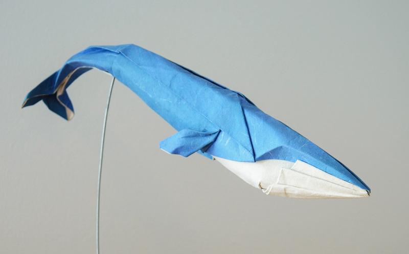 Hoang Tien Quyet - whale