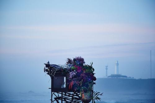 Pola BA flower stall