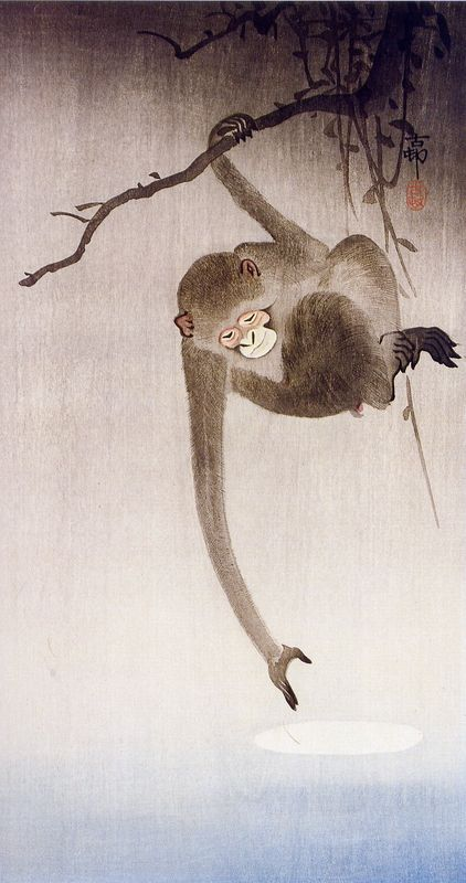 Gibbon Reaching for the Moon's Reflection, Ohara Koson, 1926