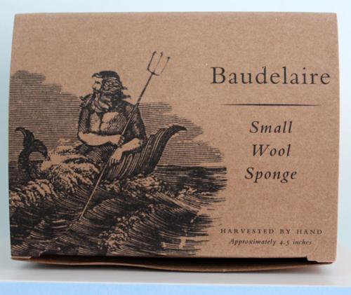 Baudelaire sponge box