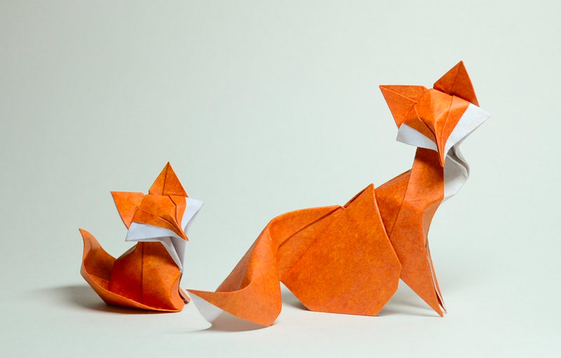 Hoang Tien Quyet - foxes
