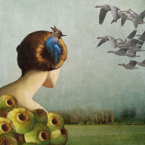 Daria-petrili-nest