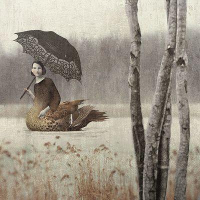 Daria-petrilli-swan-lady